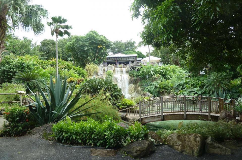 jardin botanique deshaie guadeloupe