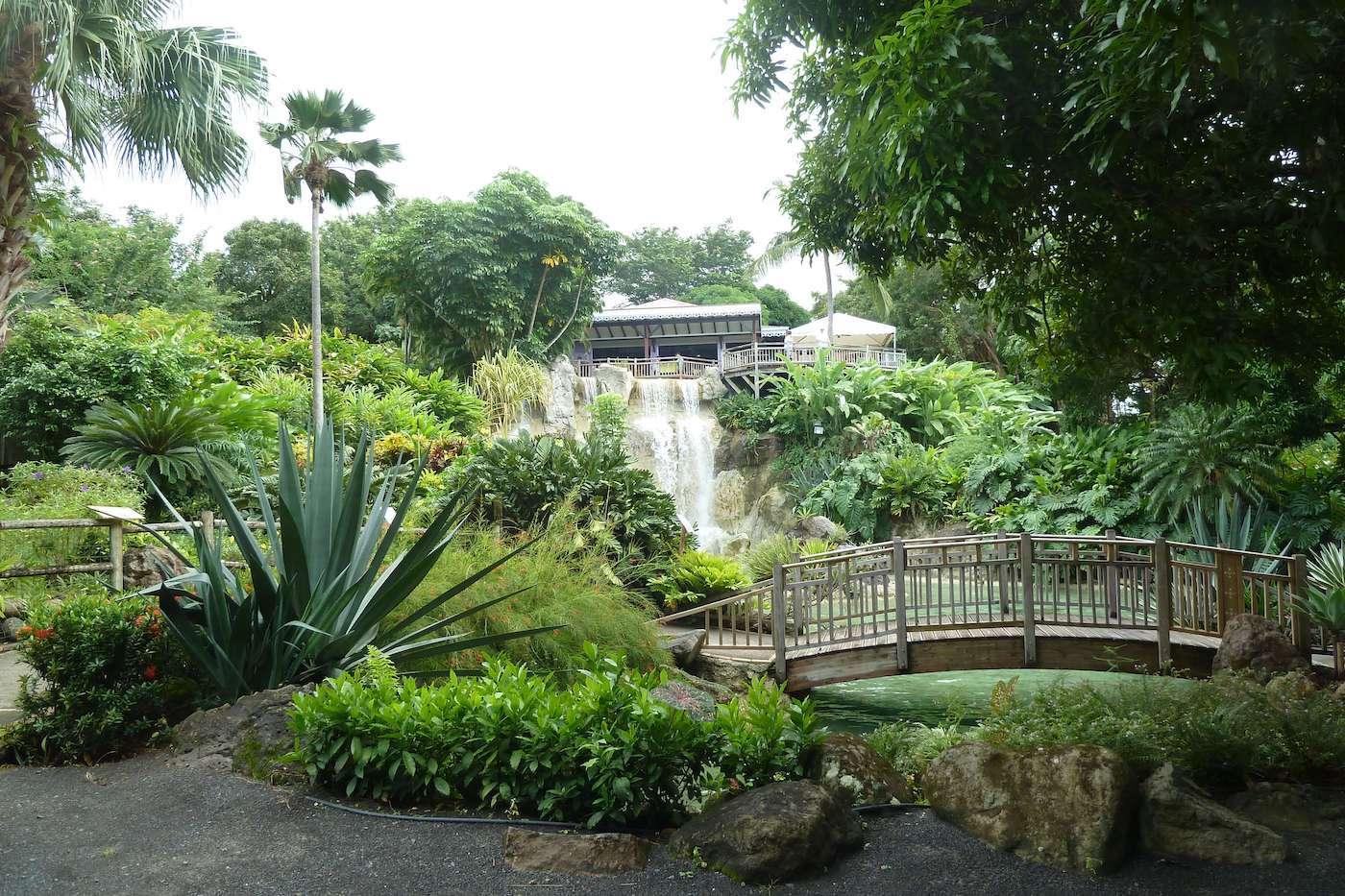 Le Jardin Botanique De Deshaies Guadeloupe Le Lagon Bleu